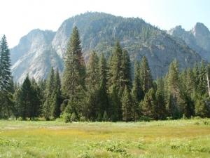 2013 Yosemite Trip
